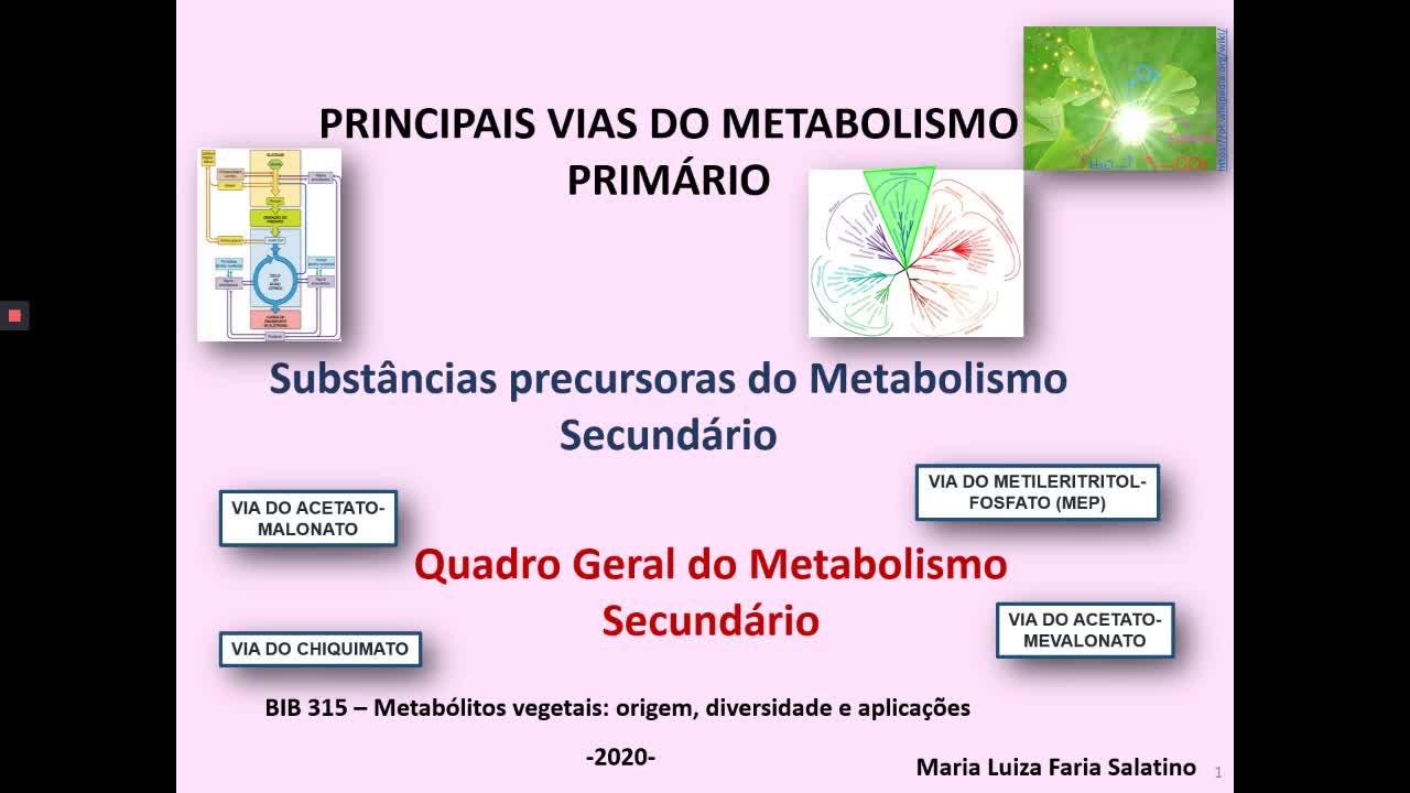 e-Aulas da USP :: Metabolismo primário e precursores do...